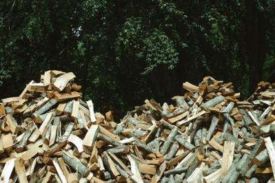 What is The Benefit of Recycling Wood?
